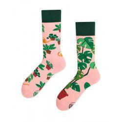Chaussettes Plant lover