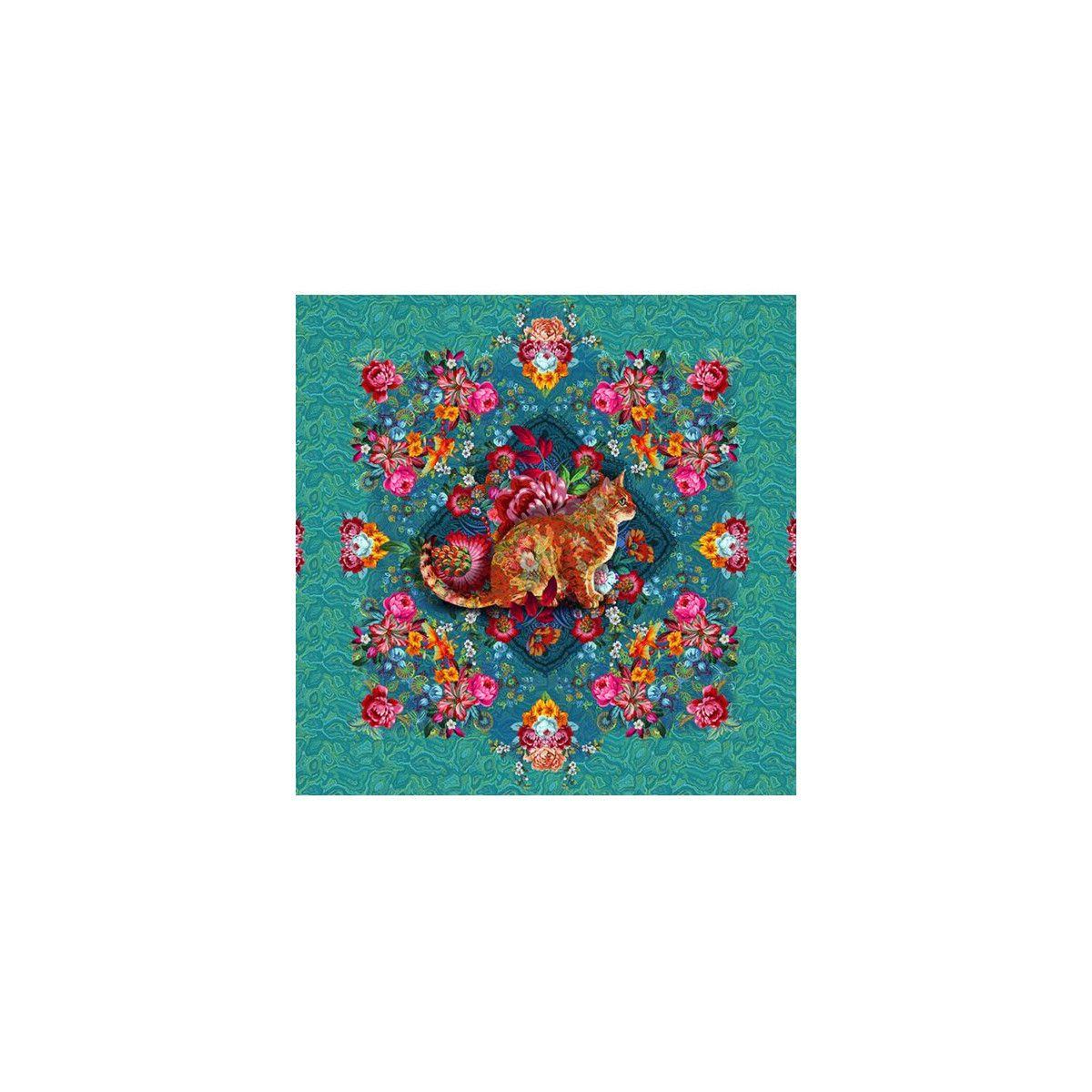 Coton Chat Malabar turquoise